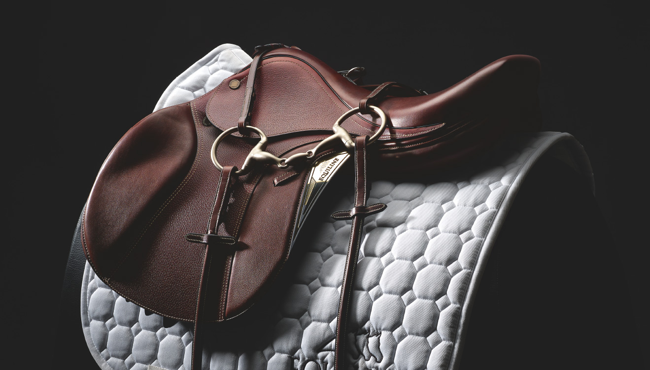 Equiline Saddle Division Discover On Equiline